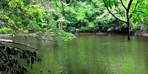 Parque nacional: garantía legal