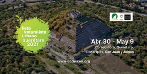 Reto Naturalista Urbano Querétaro 2021