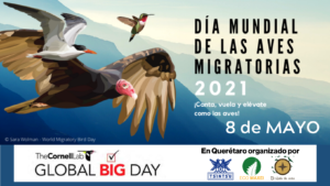 GLOBAL BIG DAY 2021 en Querétaro