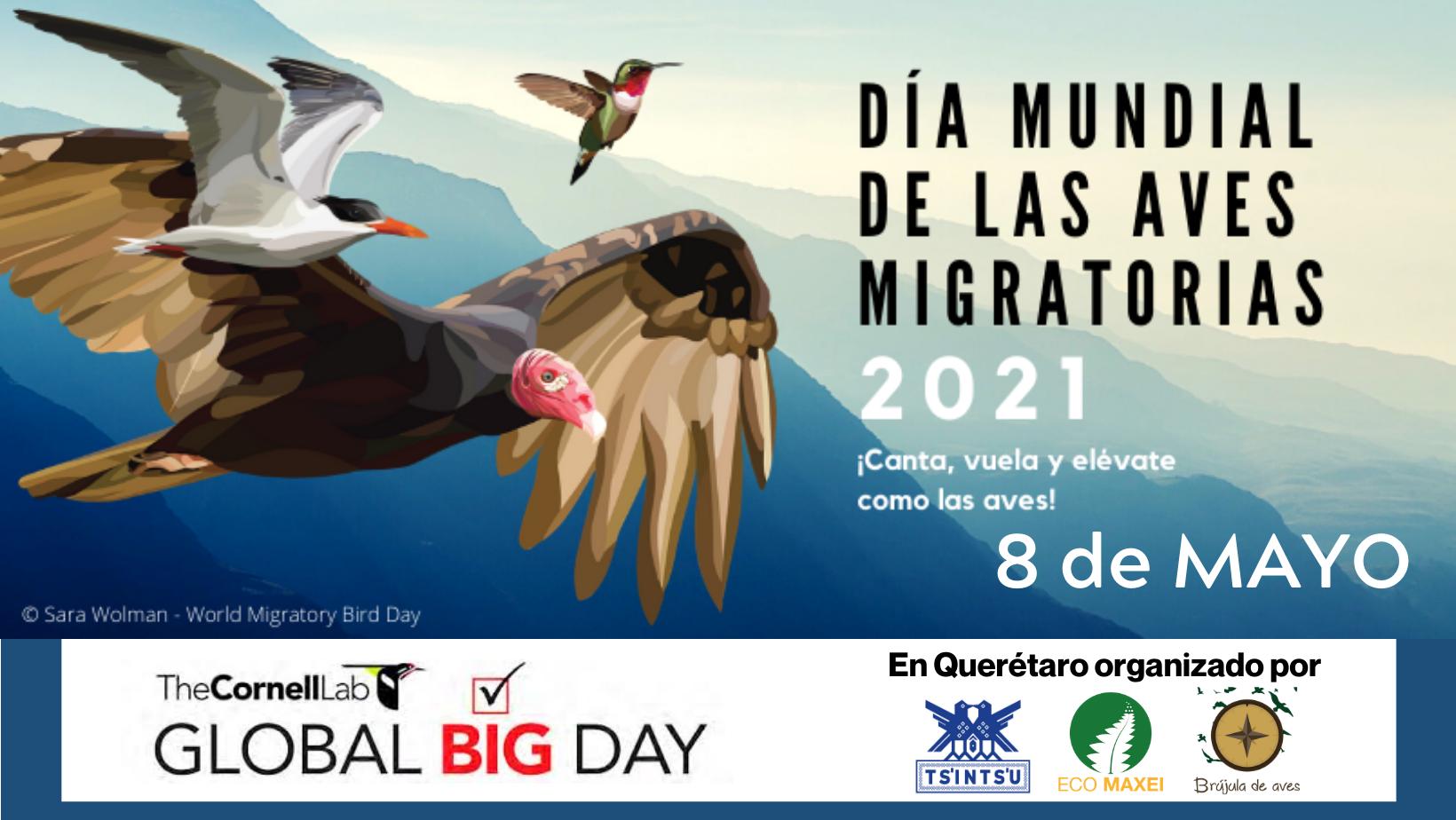 GLOBAL BIG DAY 2021 en Querétaro