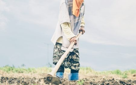 Thai farmer is hoeing his agricultural land